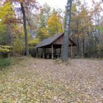 фото осеннего леса