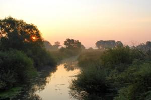 Река прохладная,фото лесных рек,лесные реки