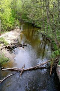 Река Красная,лесные реки,фото лесных рек